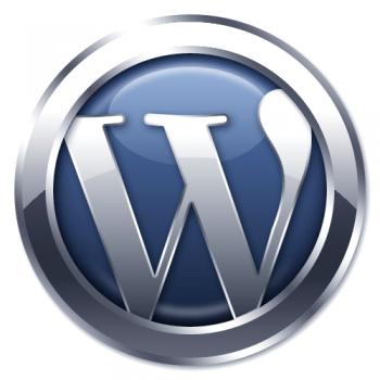 Website Designs on WordPress